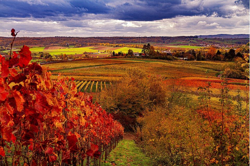 Wakacje jesienią
